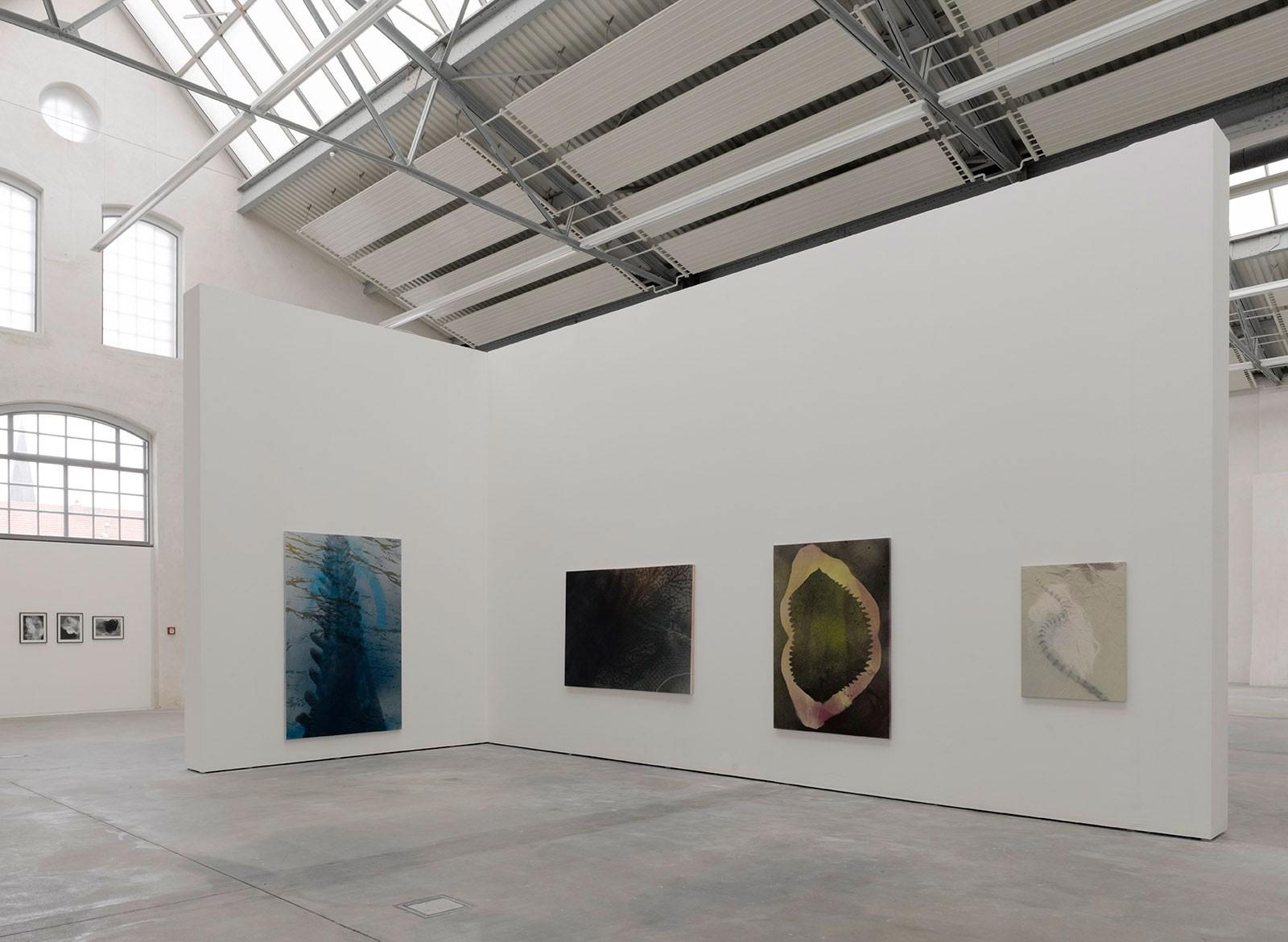 Kim Nekarda: Von einem Rätsel zum andern, 2012, Kunstverein lingen Kunsthalle