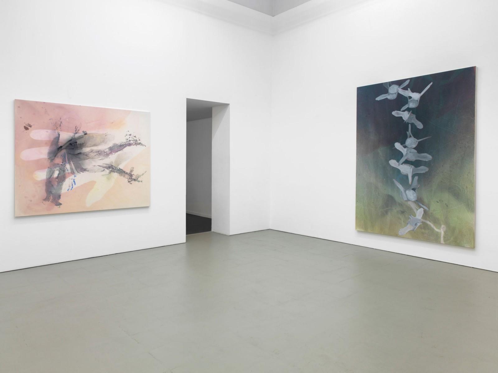 Kim Nekarda: spermwhales in limbo, 2017, Å+, berlin