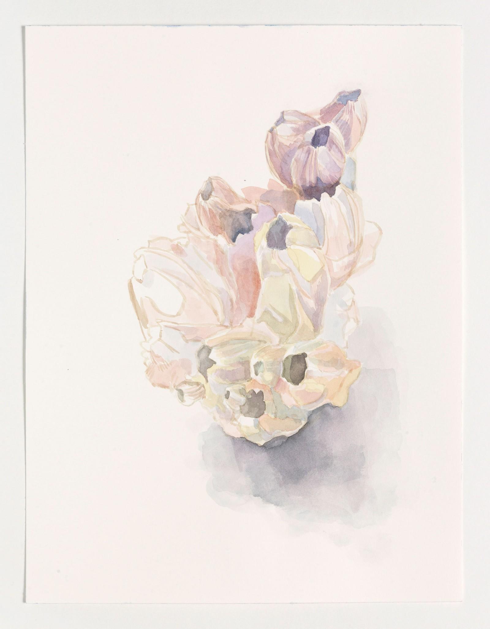 Kim Nekarda: untitled, 2015, watercolour on paper, 41 x 31 cm
