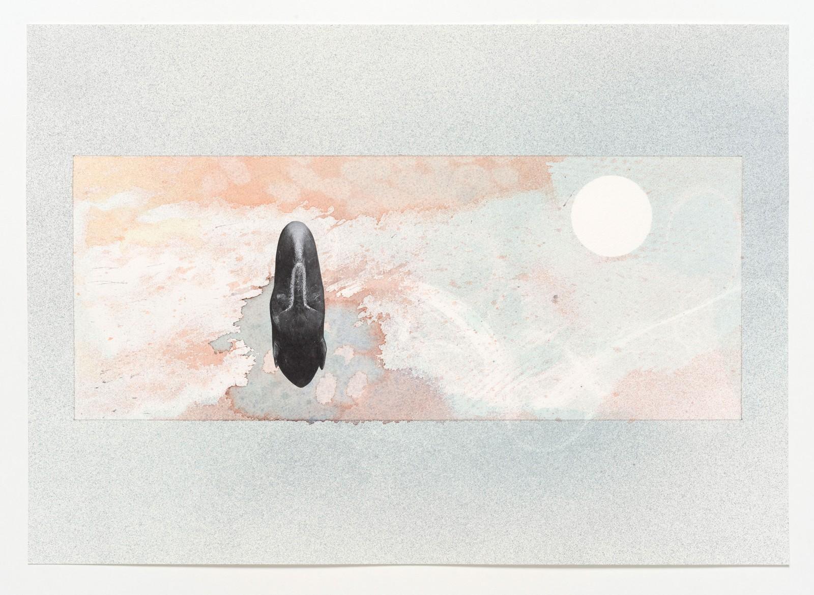 Kim Nekarda: untitled, 2019, photocopy & watercolour on paper, 41 x 58 cm