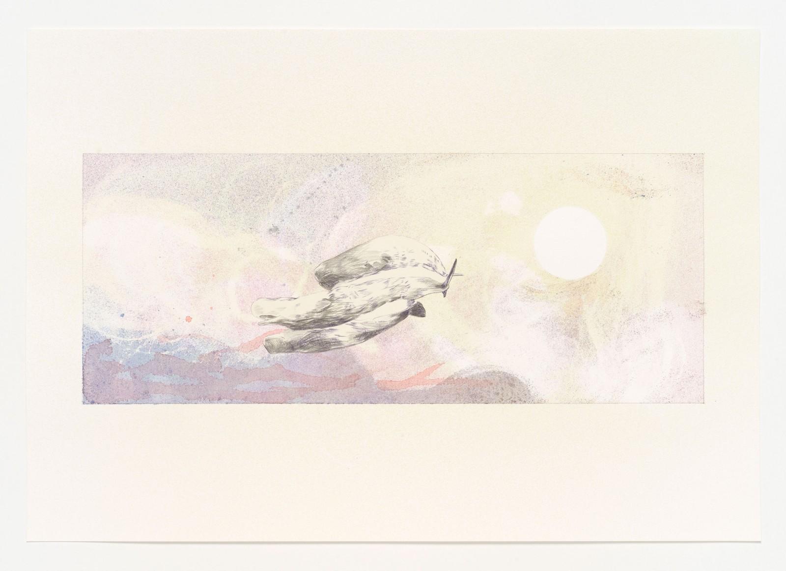 Kim Nekarda: untitled, 2019, carbon, pencil & watercolour on paper, 41 x 59 cm